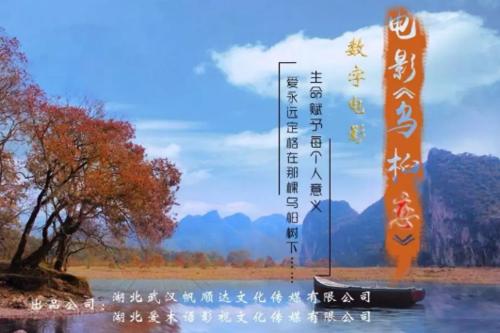 电影投资:《山楂树之恋》后,湖北第二部电影《乌桕恋》即将来袭